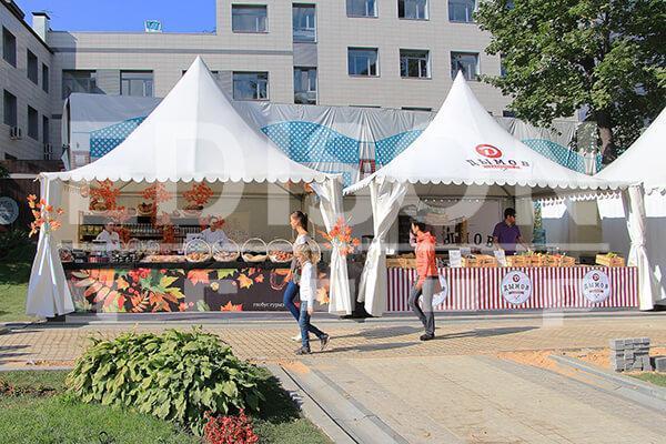Осенний фестиваль «БОЛЬШИЕ ГОСТИ»: 6-7 сентября 2014