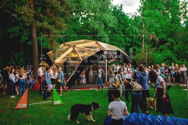 Фестиваль Petshop Days в Парке Сокольники